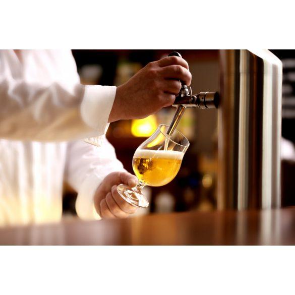BERLIN beer crystal glass (6pcs/box)